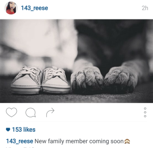 Ariel posts about a new addition to the family.
